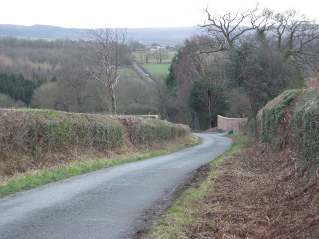 Down the hill to Row Brook.
