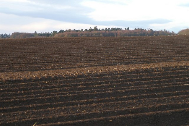 Ploughed field at Ruthven