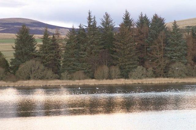 Loch of Lintrathen