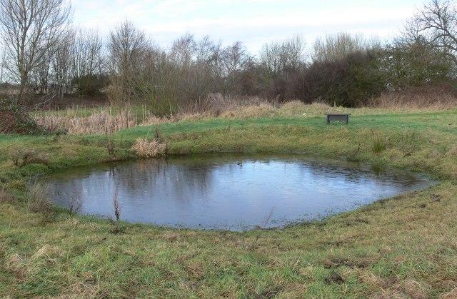 Small pond on Aylestone Meadows