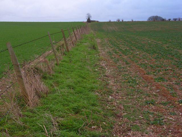 Farmland, Druce