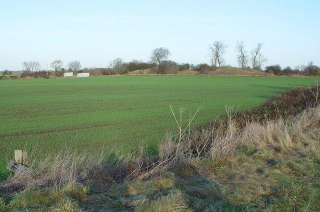 Castle Hill (1)