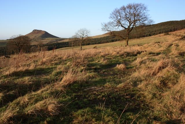 Site of Summer Hill Farm