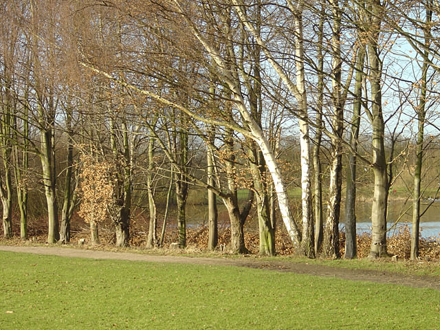 In Colwick Country Park