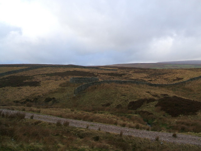 Sheepfold on Keld Side