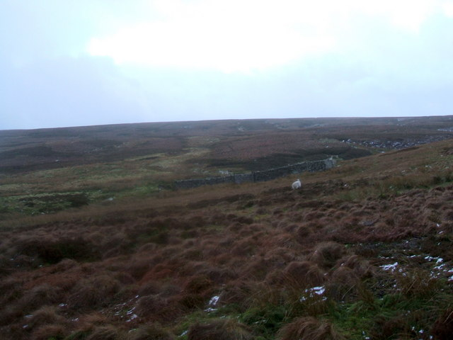 Sheepfold under Blackburn Edge