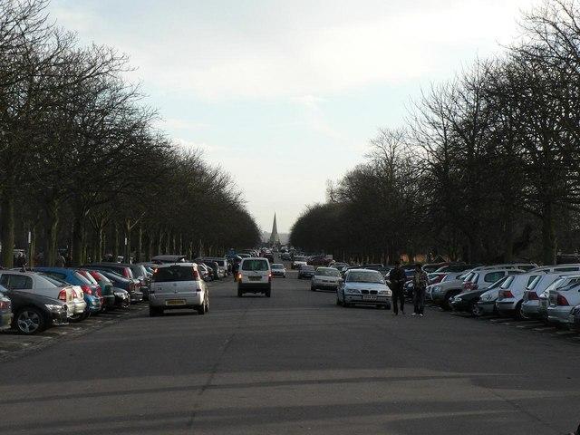 Greenwich Park: Blackheath Avenue