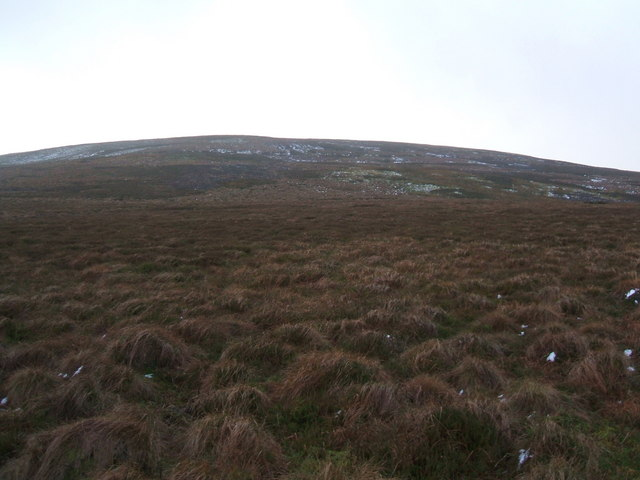 Looking up Resting Hill to Rowantree Mea Edge