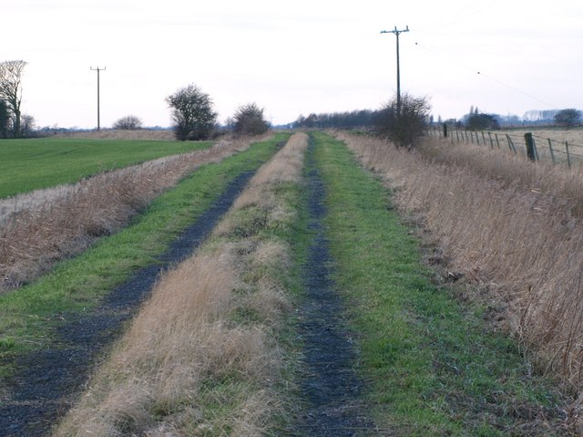 Hardy's Lane