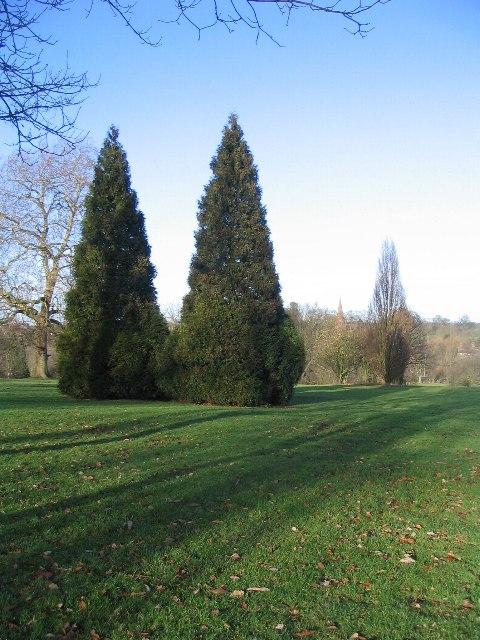 Tree spires