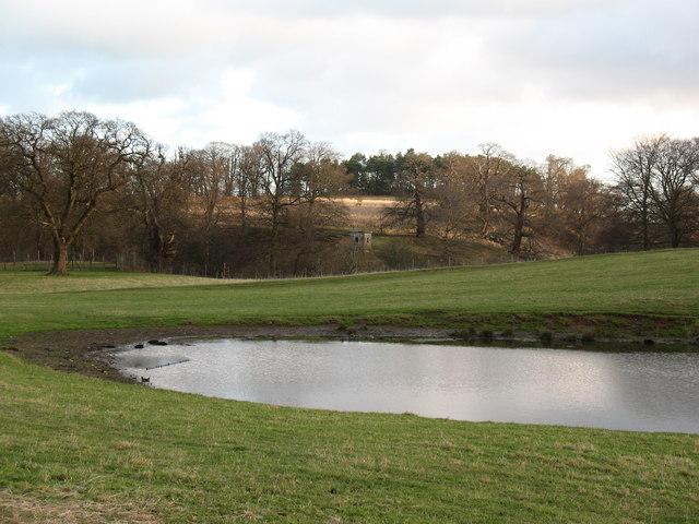 Mackershaw Pond