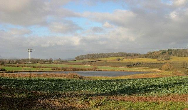 Lake, Wistaston, King's Pyon
