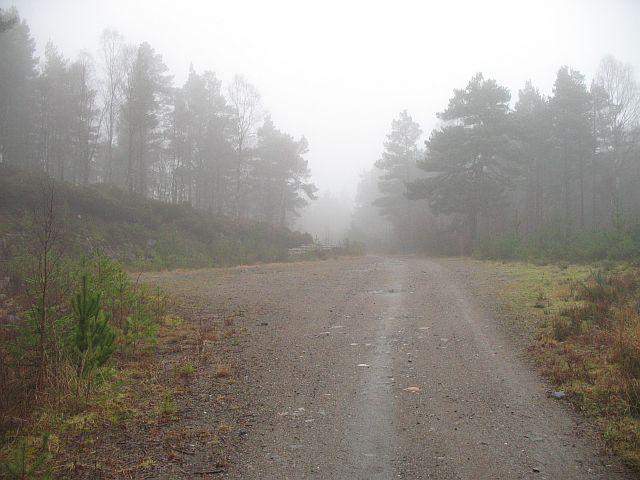 Forest road, Ruighe Bhlàir