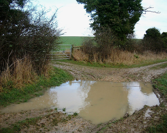 Barton Stacey -  A Muddy Puddle