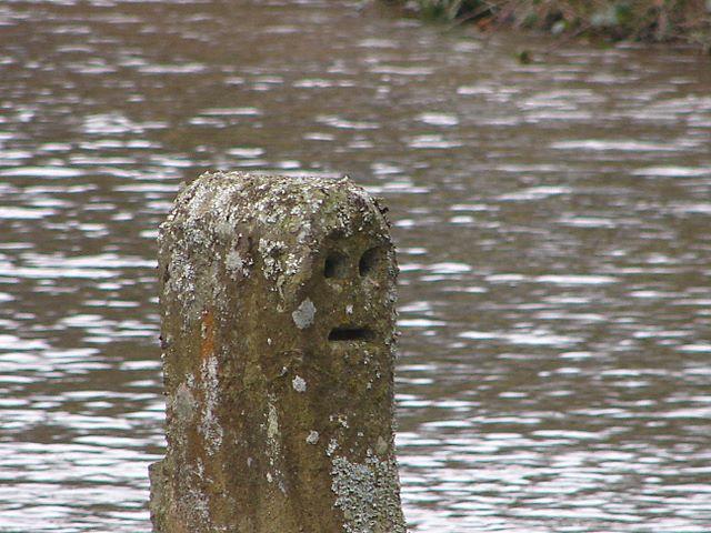 Face at Felin Newydd Falls
