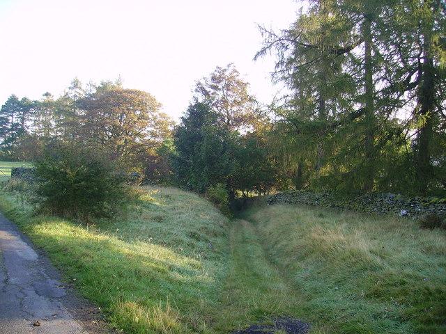 Track, Beckside