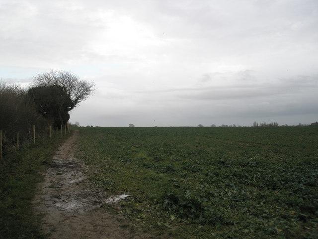 Muddy footpath at Nutbourne