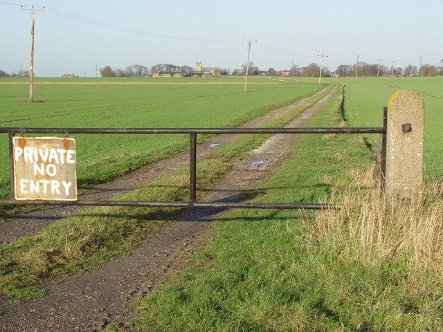 Farm Track to Swine