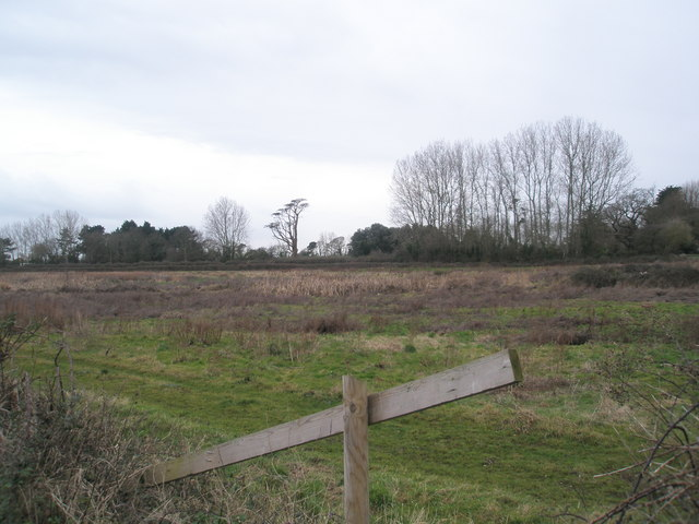 Field at start of Nutbourne coastal footpath
