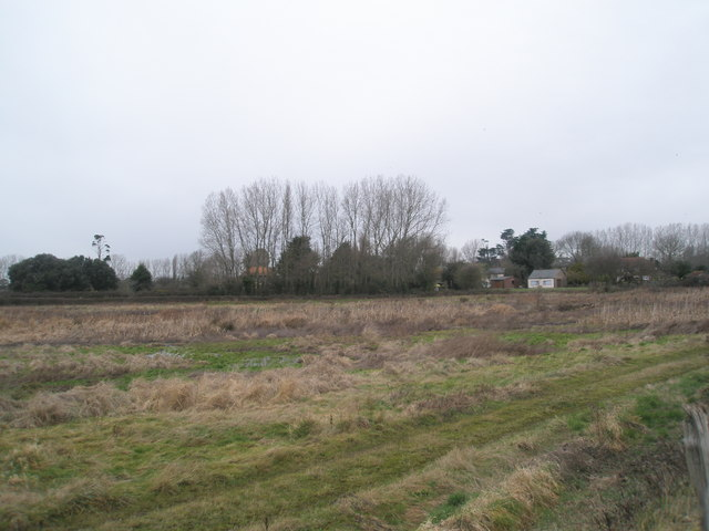 Looking across the fields at Nutbourne