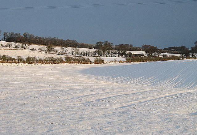 Snow on Ancrum Moor