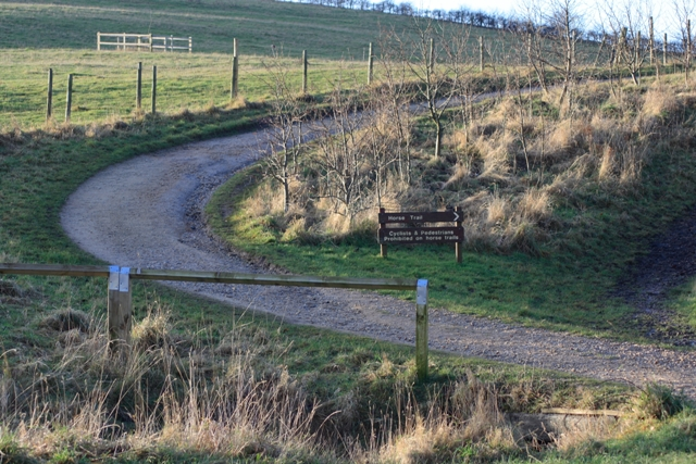 Path Bend, Bestwood Country Park