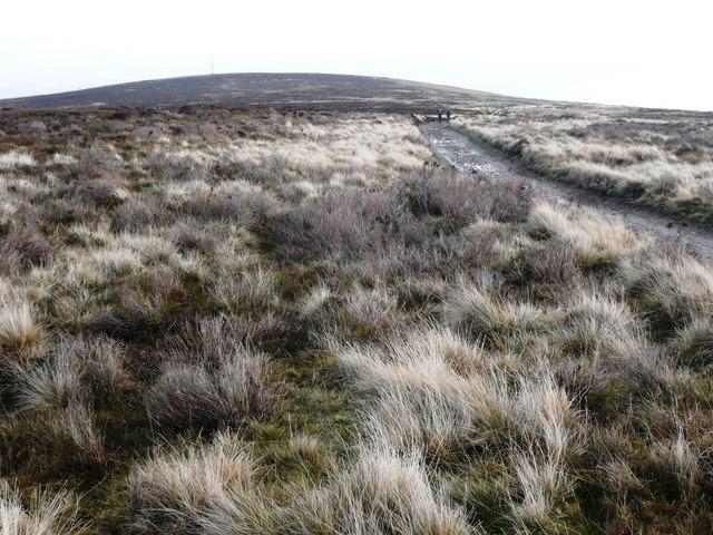 Western flank of Mynydd Twyn-glas