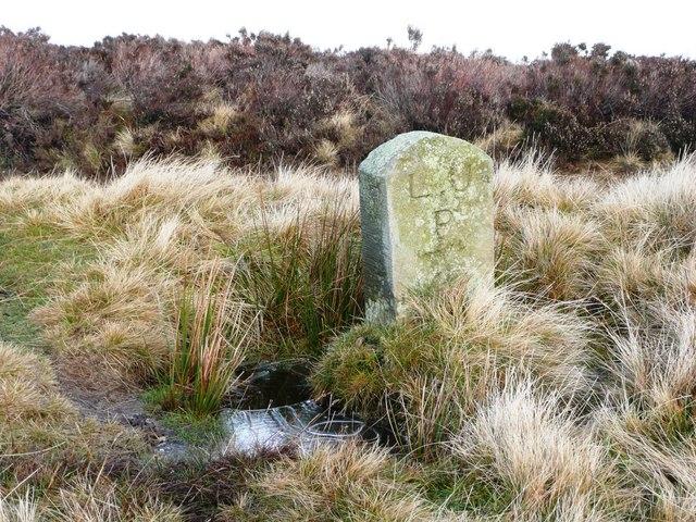 Boundary stone on Mynydd Twyn-glas