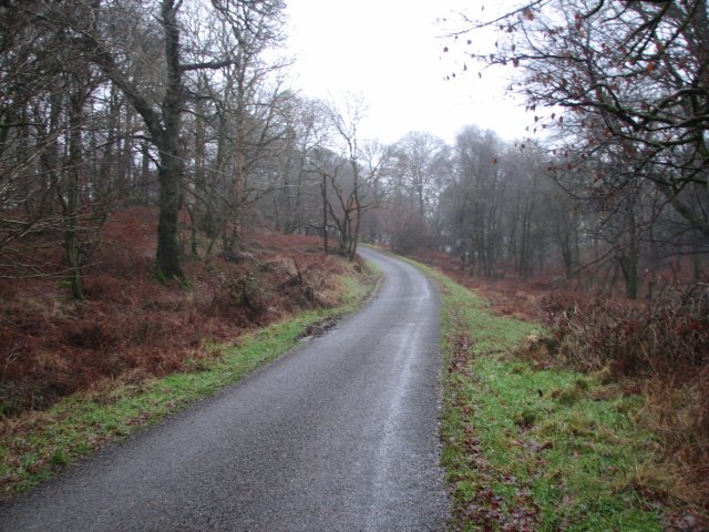 Road at Castramont