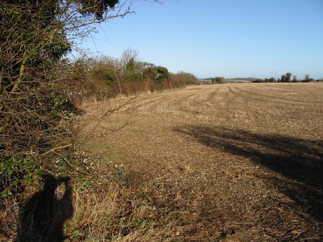 Field boundary along the road to Barfrestone
