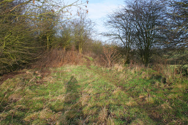 Old railway embankment