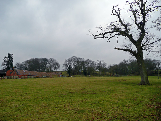 Farm buildings and pastures