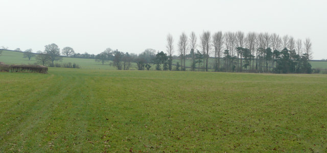 View east towards Hinwood