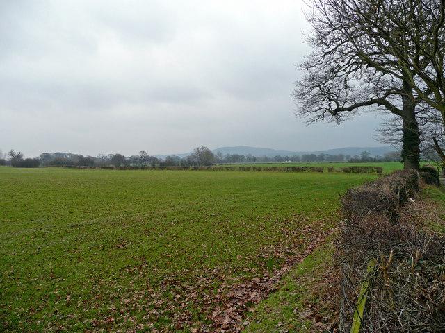 Pastures and distant hills