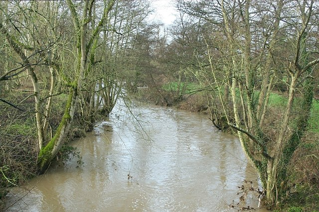2008 : River Frome at Rode Bridge