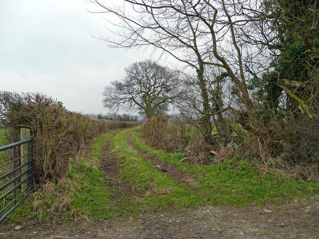 Track off Hem Lane