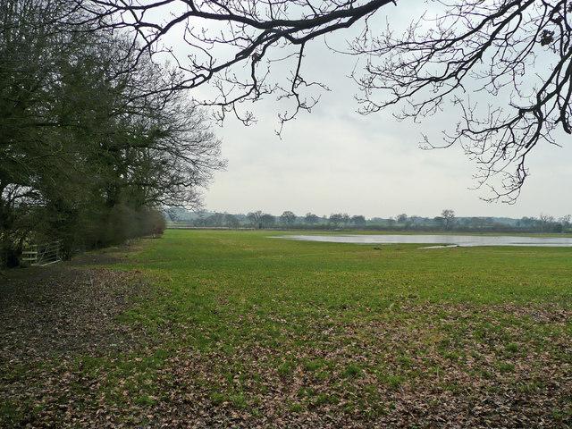 View north of Hem Lane