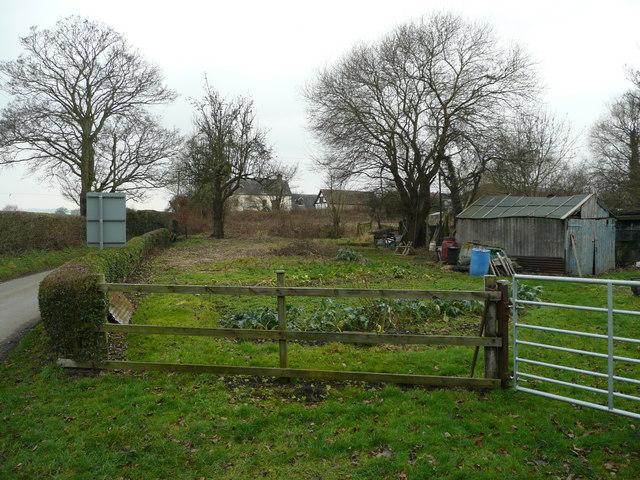 Vegetable garden in Asterley