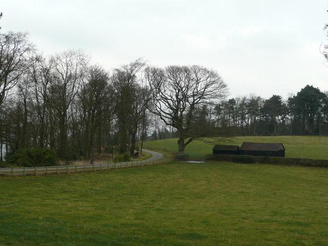 Drive and barns at Leigh Manor.