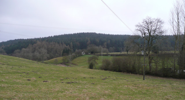 View east to Shelve Hill Woods