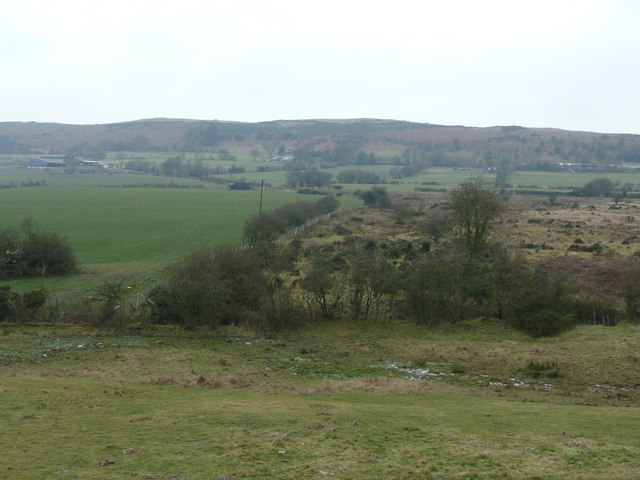 Edge of moorland