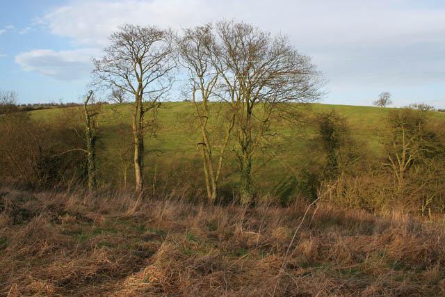 Looking across the Devon valley