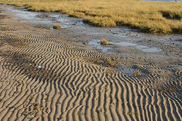 Sand and Mud