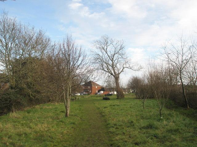 Footpath through Old Bridge Meadow