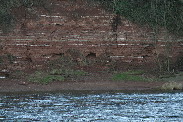 Cliffs below East Bridgford