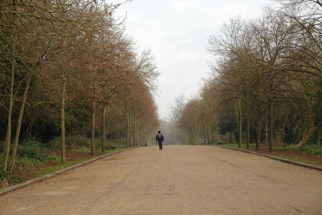 Walking to Alexandra Palace