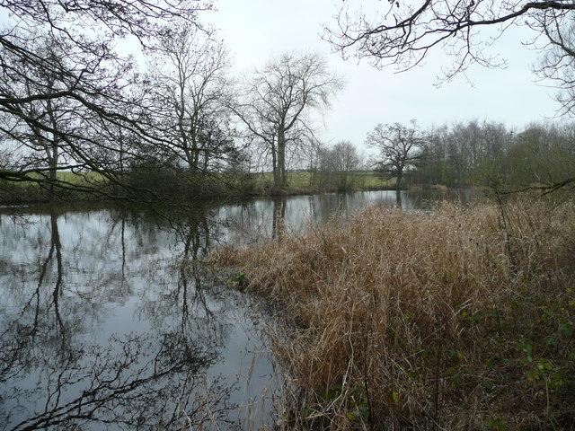 Pond at Hardwick