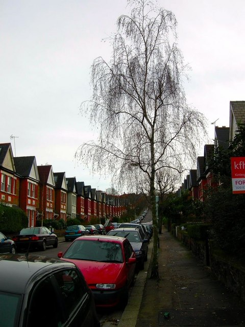 Looking up Uplands Road