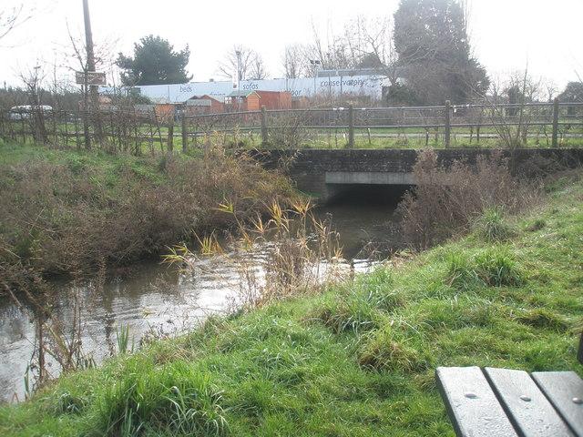 Edge of Old Bridge Meadow