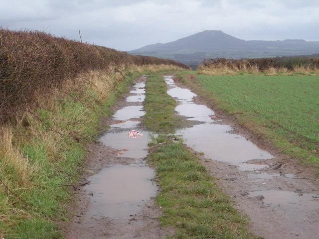 Path to Grove Farm & Pitchford.